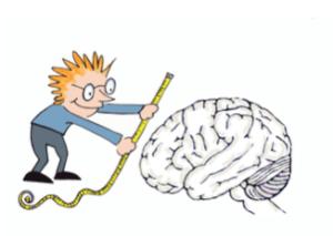 Diagnostik: Ein Mann misst das Gehirn